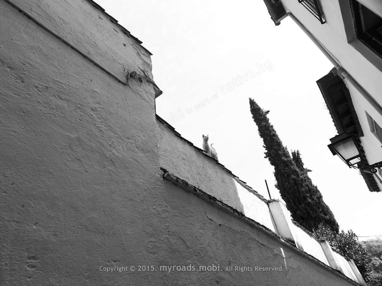 granada-ivelina-berova (26)