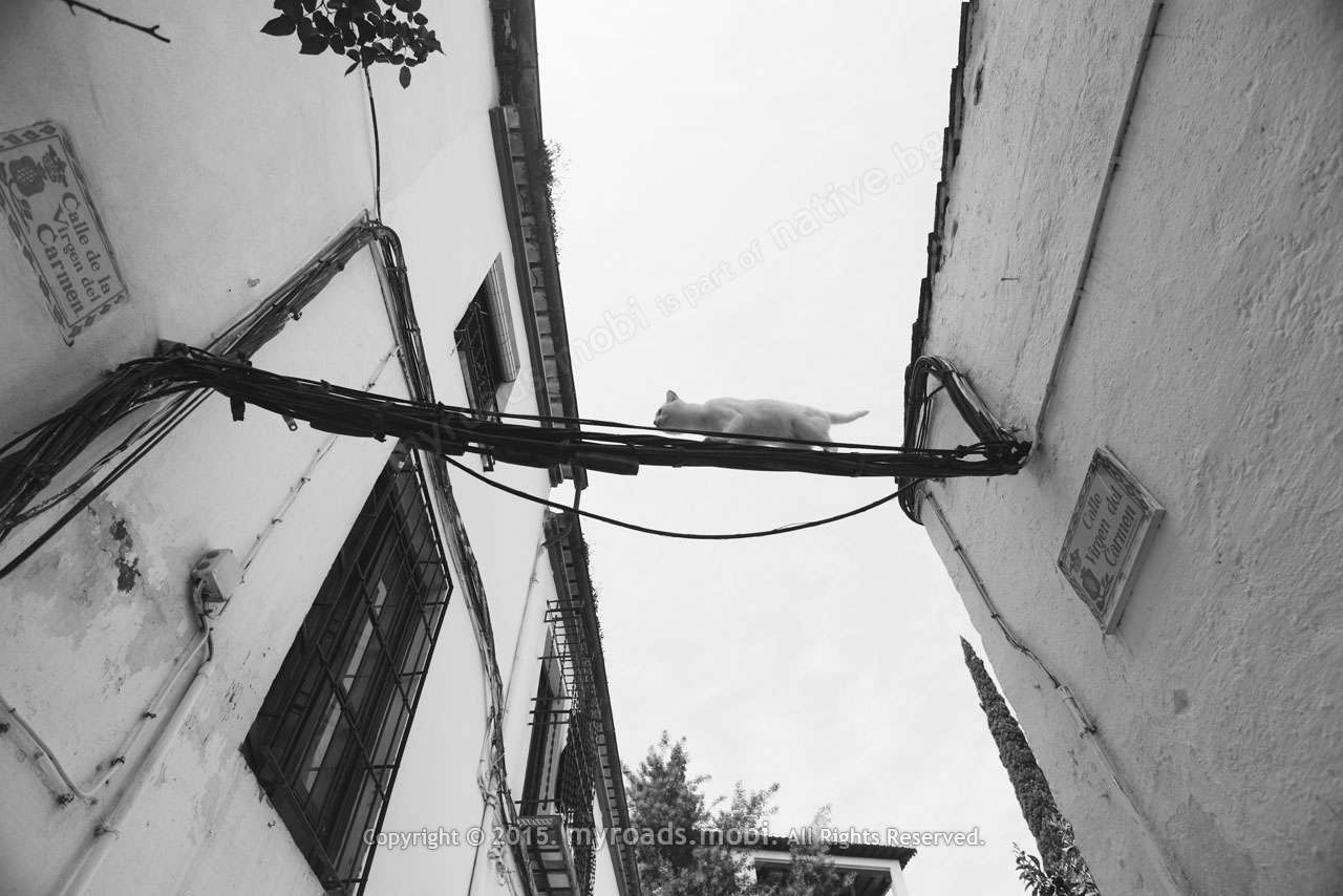 granada-ivelina-berova (27)