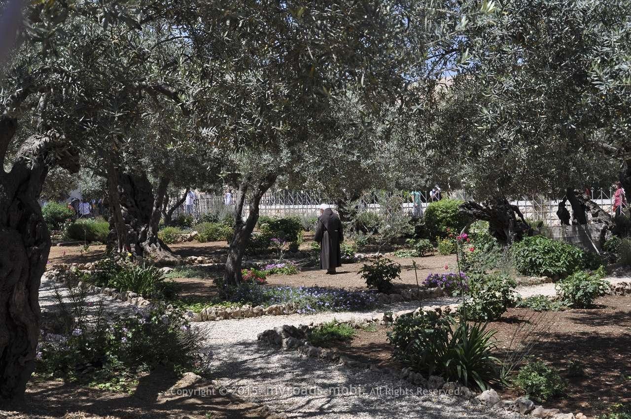 jerusalim-myroadsmobi (14)