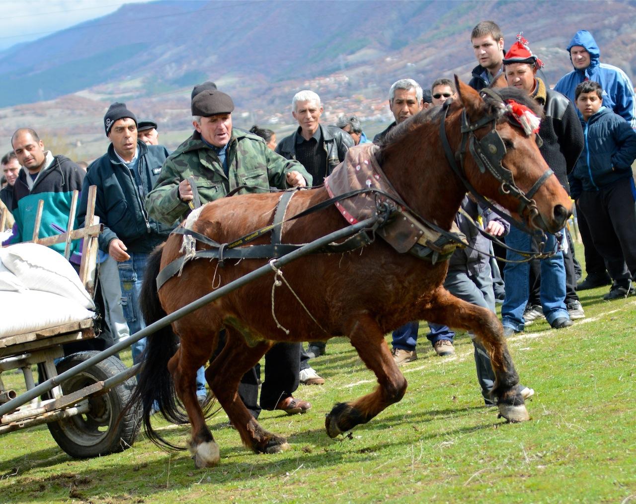 Село Крупник – кушия, част I.