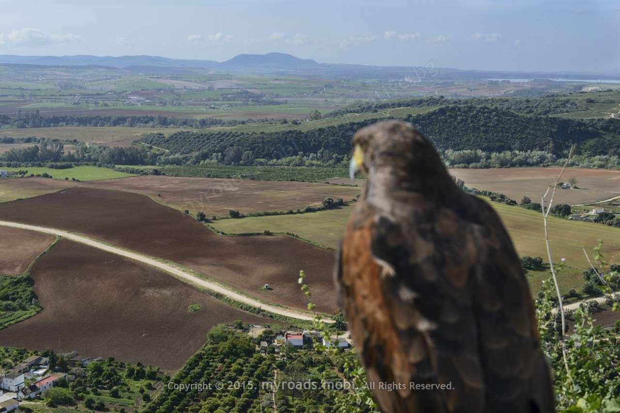 Аркос де ла Фронтера – орловото гнездо на белите Андалусийски села