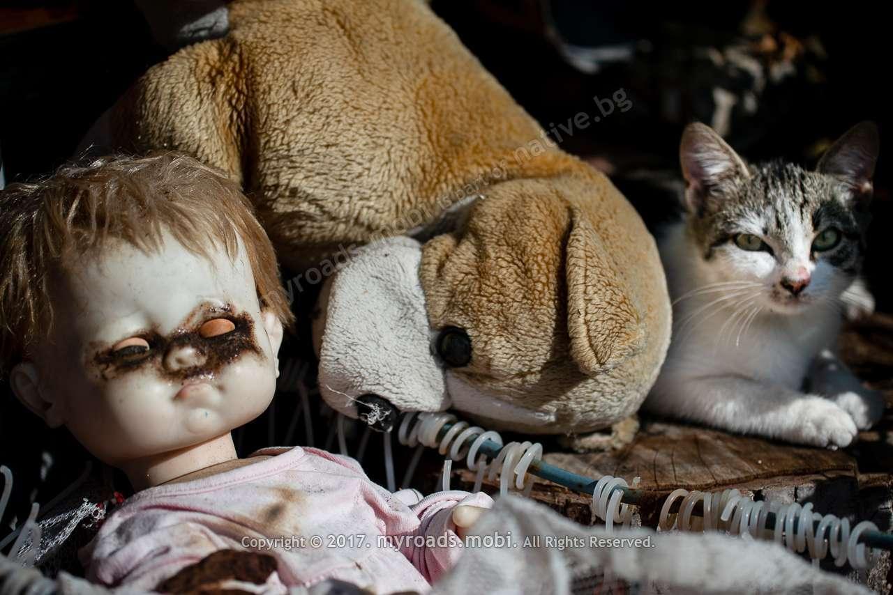 Къща, кукли, котки…