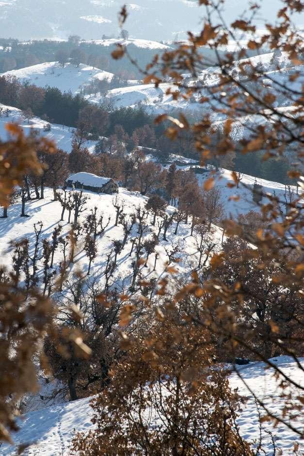 Село Долна Крушица в Огражден планина