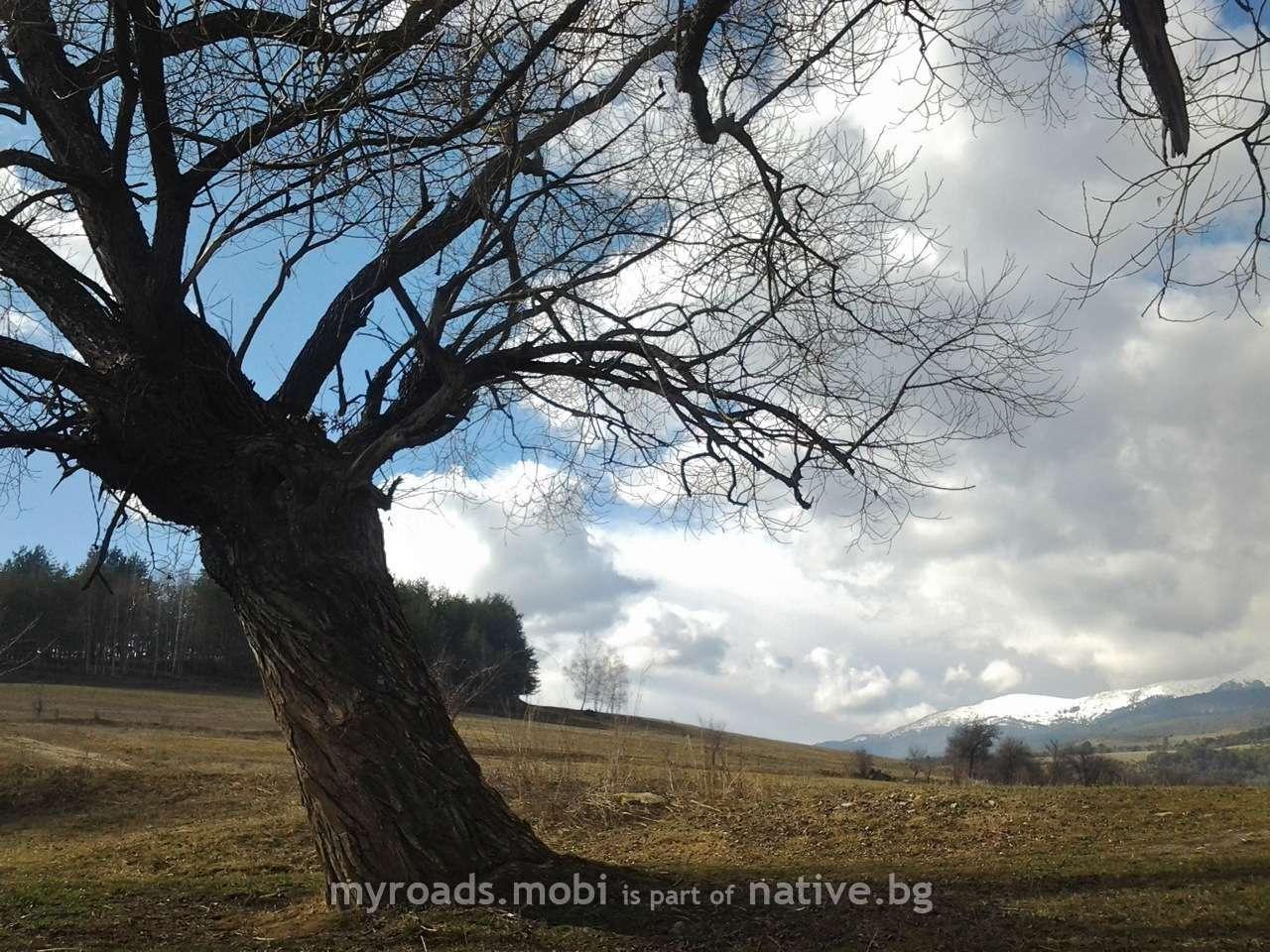 Село Добърско – малък таблетен репортаж