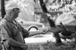 man-pigeon-2015-ivelina-berova-4
