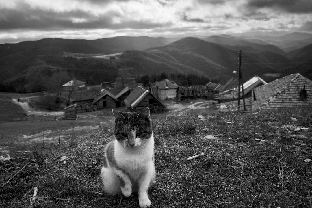 Село Орцево или какво е да живееш на 1600м надморска височина в Родопите? + фотогалерия